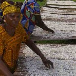 African women drying cassava in DRC