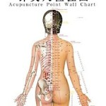 acupuncture-point-chart