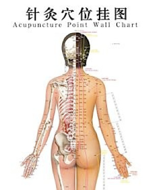 acupuncture-point-chart.jpg
