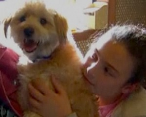 photo of dog from MSNBC video