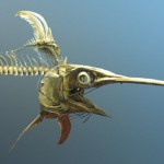 swordfish skeleton-Postdlf