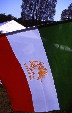 palestinianflag.jpg