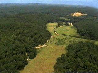 The Elephants Sanctuary, 2700 acres