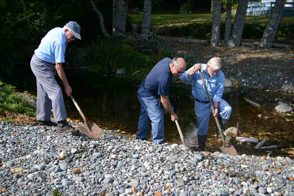 Nile Creek Enhancement Society restoring streams in British Columbia, Canada