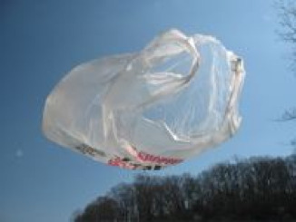 plastic-bag-litter