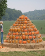 pumpkin_pile.jpg