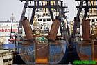 piratefishingfleet.jpg