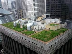 green-rooftop.jpg