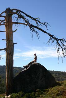 meditationrock.jpg
