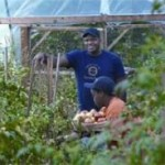 urban-farmer-genius-awrd.jpg