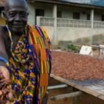 cocoa-farmer-freetrade.jpg