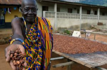 cocoa-farmer-freetrade.jpg