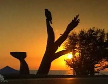 katrina-tree-sculptures.jpg