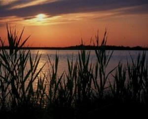 chesapeake-bay-sunset-yuri-huta.jpg