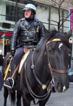 horse-police-nyc.jpg