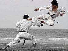 karate-kick-beach.jpg