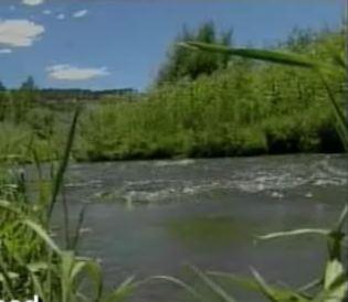 colorado-river-msnbc-video.jpg