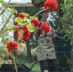 filthorn-flower-waste-treatment.jpg