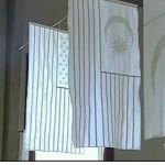 flags-white-9-11.jpg