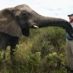 elephant-whisperer.jpg