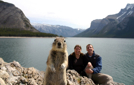 squirrel-in-family-photo.jpg