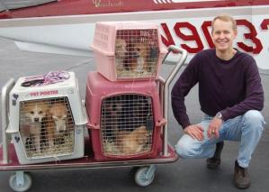 A Paw And A Prayer Pilots Save Shelter Animals Good News Network