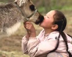 reindeer-people.jpg