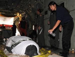 manatee-aboard-plane-uscoastgrd.jpg