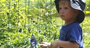 garden-w-toddler-tomsofmaine.jpg