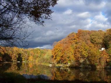 lake-in-fall-osprey.jpg