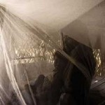 mosquito nets - WHO photo