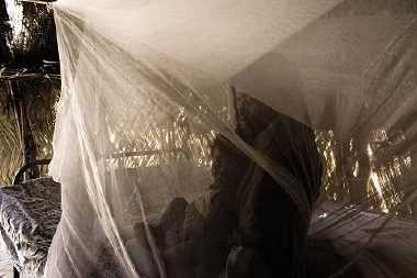 mosquito-net-by-who.jpg