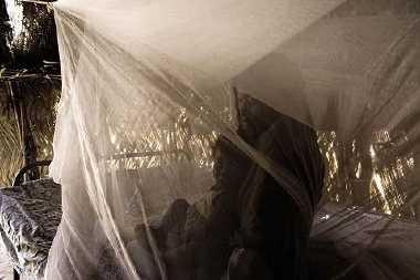 mosquito nets - WHO photo