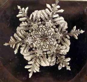snowflake-photo-bentley.jpg