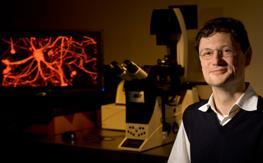 stanford-scientist-neuron-screen.jpg
