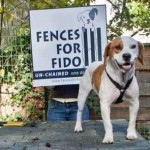 Fences For Fido photo