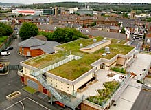 green roof on Sharrow school in the UK