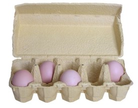 egg-carton-mzacha-morguefile