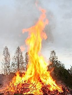 forest-fire-partial-jagberg-morguefile.jpg