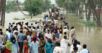 Pakistan floods - WFP photo
