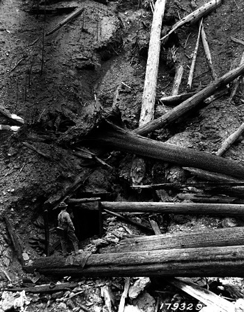 idaho mineshaft where Pulaski herded dozens who would survive fire