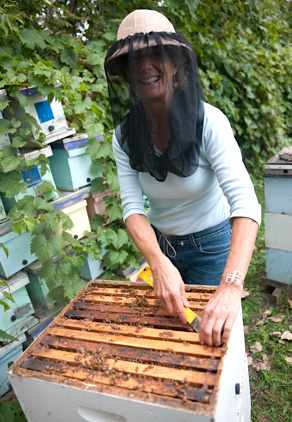 Bee researcher Marla Spivak, courtesy of MacArthur Foundation