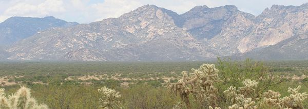 Arizona-Desert-news21-photo