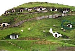 Hobbit homes tour in New Zealand