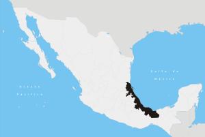 map of Veracruz, Mexico