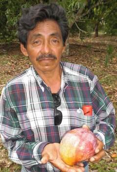 mango-farm-associate-jesus-hernandez-News21
