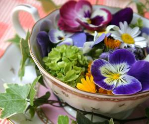 photo of edible pansies, by chamomile, via morguefile.com