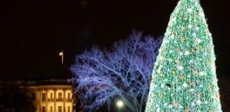 National Christmas tree lighting, 2010 NPS photo
