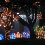 lights raise money for food bank