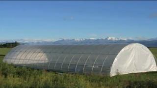 hoop-house farming, USDA photo